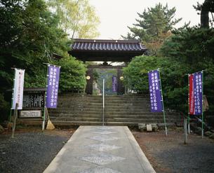 隠岐国分寺の写真素材 [FYI04026714]