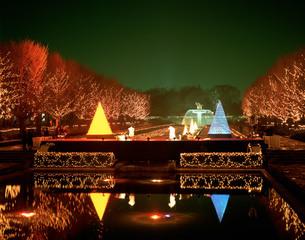 昭和記念公園のクリスマスの写真素材 [FYI04026728]
