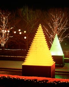 昭和記念公園のクリスマスの写真素材 [FYI04026729]