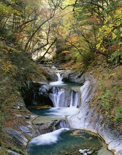 秋の西沢渓谷 三重の滝の写真素材 [FYI04026742]