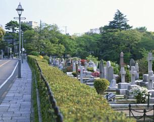 横浜外人墓地の写真素材 [FYI04026940]