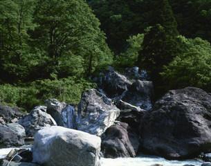 小滝川ヒスイ峡の写真素材 [FYI04026956]