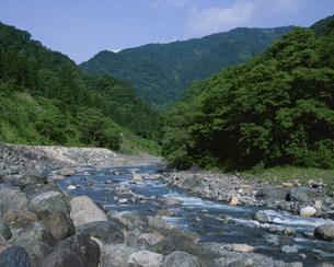 小滝川ヒスイ峡の写真素材 [FYI04026958]