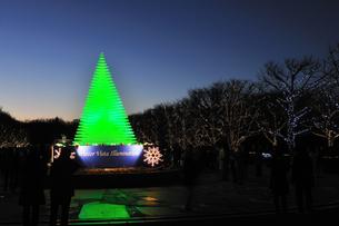 昭和記念公園のクリスマスイルミネーションの写真素材 [FYI04027071]