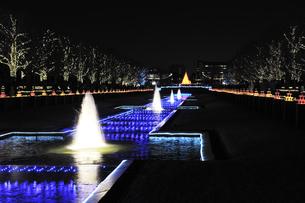 昭和記念公園のクリスマスイルミネーションの写真素材 [FYI04027075]