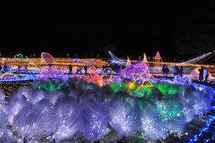 昭和記念公園のクリスマスイルミネーションの写真素材 [FYI04027080]
