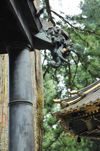 日光東照宮 回転燈籠(廻燈籠)の獏の写真素材 [FYI04027164]