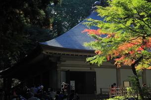 中尊寺 金色堂の写真素材 [FYI04027203]