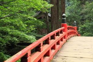 羽黒山 神橋の写真素材 [FYI04027227]