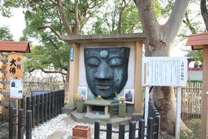 上野大仏の写真素材 [FYI04027235]