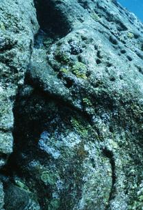 与那国島海底遺跡ポイントの写真素材 [FYI04027246]