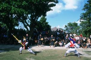 竹富島の種取祭の写真素材 [FYI04027258]