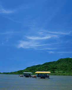 西表島から由布島に渡る水牛車の写真素材 [FYI04027300]