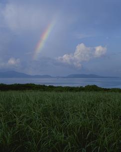 小浜島から虹 石垣島を望む 沖縄県の写真素材 [FYI04027441]