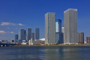 豊洲公園から望む晴海周辺ビル群の写真素材 [FYI04027533]