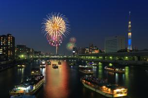 隅田川花火大会の写真素材 [FYI04027577]