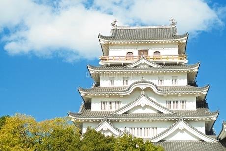 福山城と青空の写真素材 [FYI04027624]