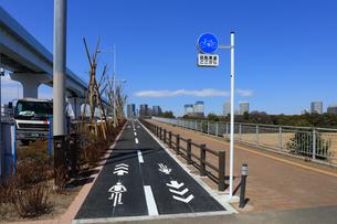 自転車専用レーンの写真素材 [FYI04027626]