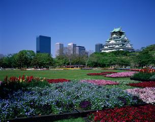 新緑の花・彩・祭おおさか 大阪城の写真素材 [FYI04027869]