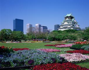 新緑の花・彩・祭おおさか 大阪城の写真素材 [FYI04027870]