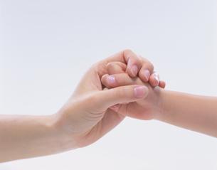 握り合う母と子の手の写真素材 [FYI04027931]