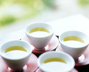 緑茶の写真素材 [FYI04028284]