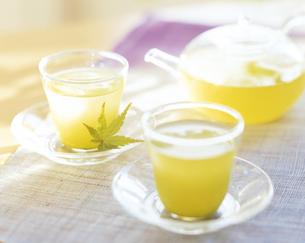 緑茶の写真素材 [FYI04028291]