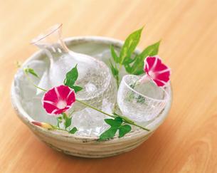 冷酒と朝顔の写真素材 [FYI04028312]