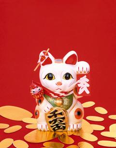大入袋を持つまねき猫の写真素材 [FYI04028535]