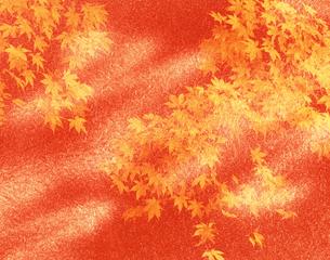 紅葉と和紙の写真素材 [FYI04028554]