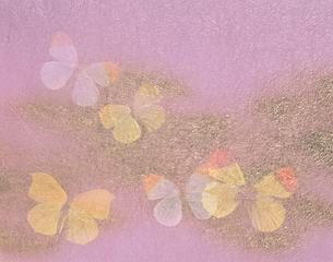 蝶と和紙の写真素材 [FYI04028560]