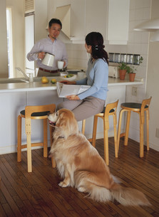コーヒータイムの熟年夫婦と犬の写真素材 [FYI04028645]