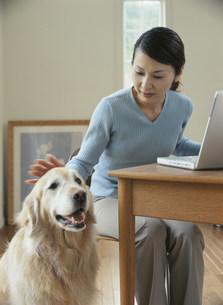 パソコンをする女性と犬の写真素材 [FYI04028663]