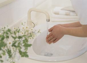 手を洗う女性の写真素材 [FYI04028740]