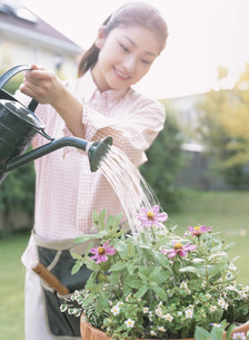 じょうろで水をやる女性の写真素材 [FYI04028876]