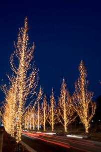 ローム クリスマスイルミネーションの写真素材 [FYI04028943]