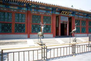 頤和園の楽寿堂の写真素材 [FYI04029009]