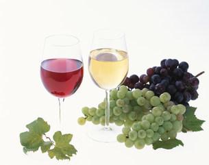 赤と白のワインとぶどうの写真素材 [FYI04029157]