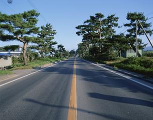 赤松街道国道5号 七飯町北海道の写真素材 [FYI04029639]