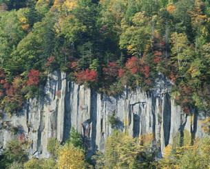 層雲峡柱状節理と紅葉の写真素材 [FYI04029655]