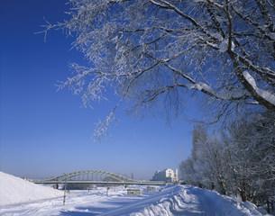 冬の旭橋の写真素材 [FYI04029660]