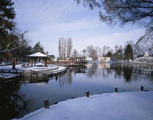 冬の常磐の写真素材 [FYI04029686]