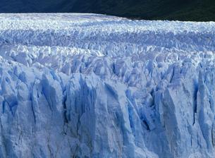 ペリト・モレノ氷河の写真素材 [FYI04029759]
