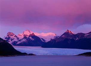 ペリトモレノ氷河 Los Glaciares NPの写真素材 [FYI04029771]
