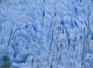 グレイ氷河 パイネ国立公園の写真素材 [FYI04029772]