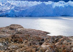 ペリトモレノ氷河 Los Glaciares NPの写真素材 [FYI04029773]