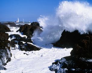 野島崎灯台と波の写真素材 [FYI04030294]