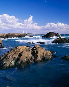 野島崎灯台と海の写真素材 [FYI04030296]
