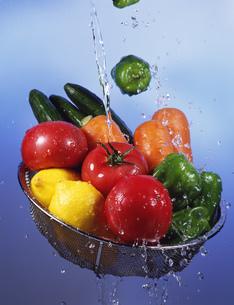 野菜の写真素材 [FYI04030310]