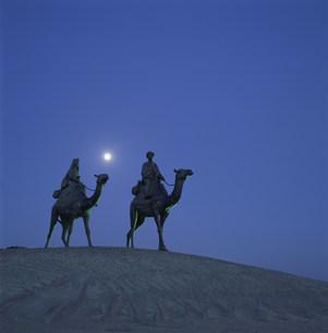 月の砂漠の像の写真素材 [FYI04030351]